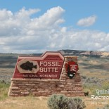 Checking Fossil Butte National Monument off the List